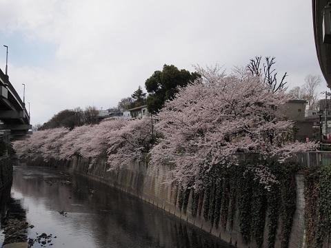 Edogawabashihiruma