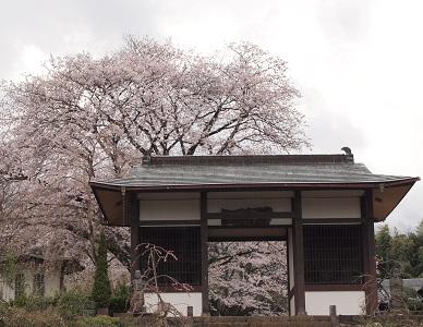 Denshiinkushigata_130331