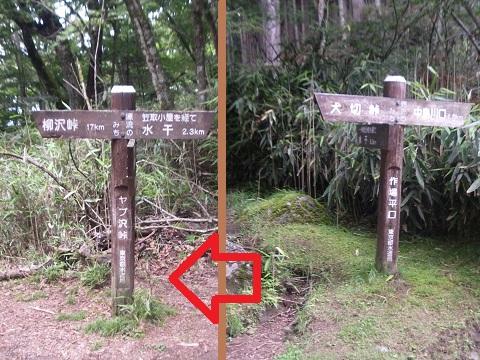 Sakubadairayabusawatouge