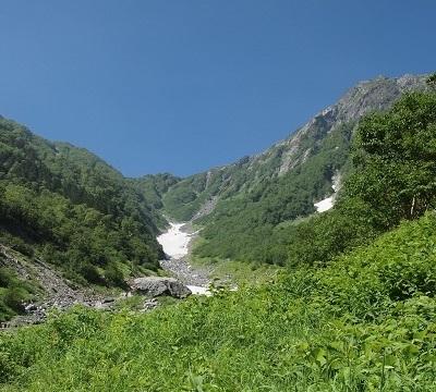 Kitadakeookazawasa