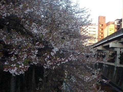 Edogawabashi140406